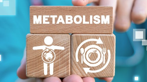 The Real Reason Your Metabolism Slows Down