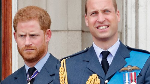Princes William And Harry Are Being Compared To These Royal Siblings
