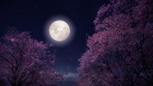 How The Full Moon On June 24 Will Affect You If You're A Cancer