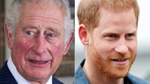 The Truth About Prince Charles And Prince Harry's Relationship Today