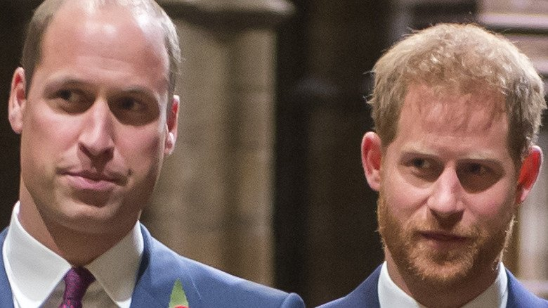 Princess Diana's Former Chef Has Strong Words For William And Harry