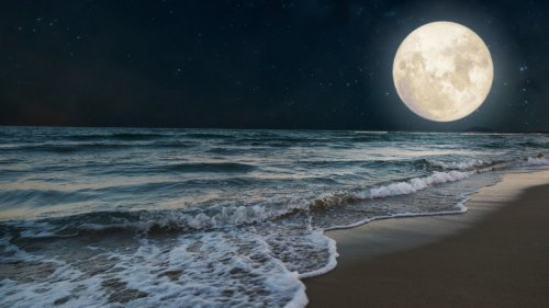 Here's What The October 20 Full Moon Means For Earth Signs