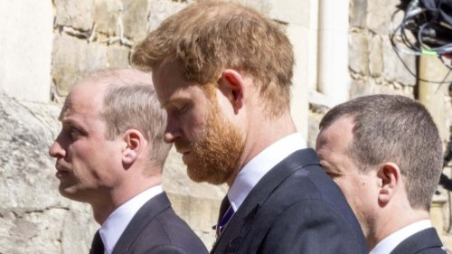 Body Language Expert Reveals The Stark Differences Between Harry And William At Prince Philip's Funeral