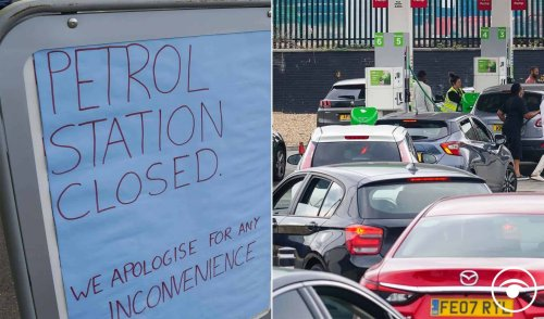 Reactions to the 'not a fuel shortage' petrol panic and drafting in HGV drivers from abroad
