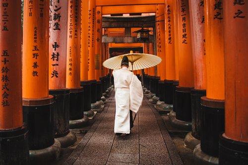 Japon Bilgeliğine Dair: Bakış Açınızı Değiştirecek Dört Felsefe • theMagger