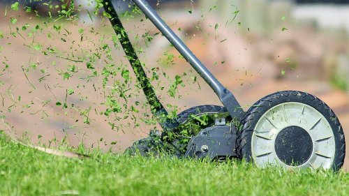 Best Prime Day Lawn Mower Deals for 2021: The Best Prices | The Manual