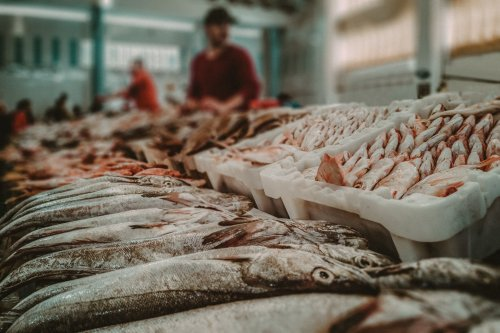 A Guide to Sustainable Seafood Shopping 2021 | The Manual