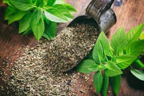 How to Dry Fresh Basil: 5 Different Ways to Preserve this Herb | The Manual
