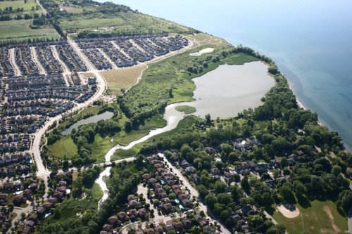 Hospital vs. headwaters: Ontario's Durham Region battles over the future of Carruthers Creek | The Narwhal