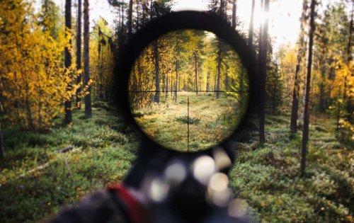 The Guns of North Carolina: Training for the Next January 6?