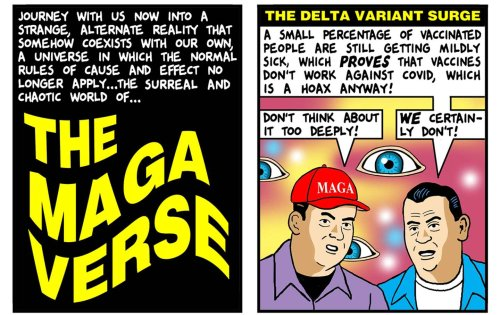 Inside the Magaverse
