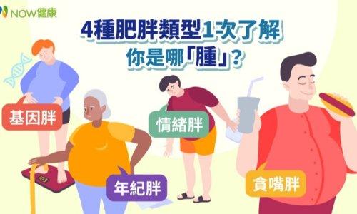 你會胖是因為基因、貪嘴還是年紀?想減重,先認清自己是哪一「腫」 - The News Lens 關鍵評論網