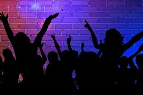 Rave party in Hassan busted, over 100 youth from Bengaluru, Mangaluru held