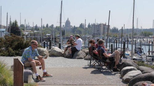 Olympia Brew Fest returns to the Port Plaza on Saturday