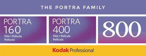 A Film Photographer's Introduction to the Kodak Portra Family