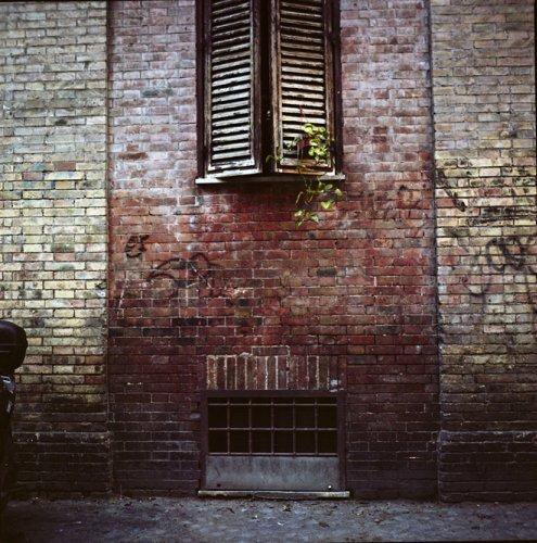 Julien Coquentin: Capturing Photos of Luminous Darkness