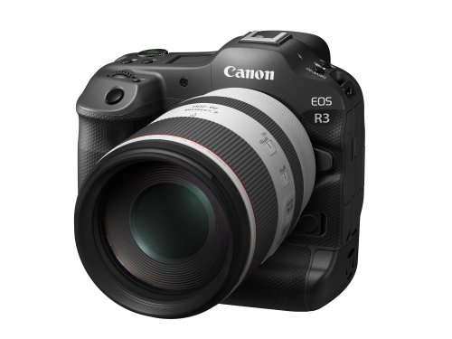 Is The Canon EOS R3 Sensor Being Made by Sony?