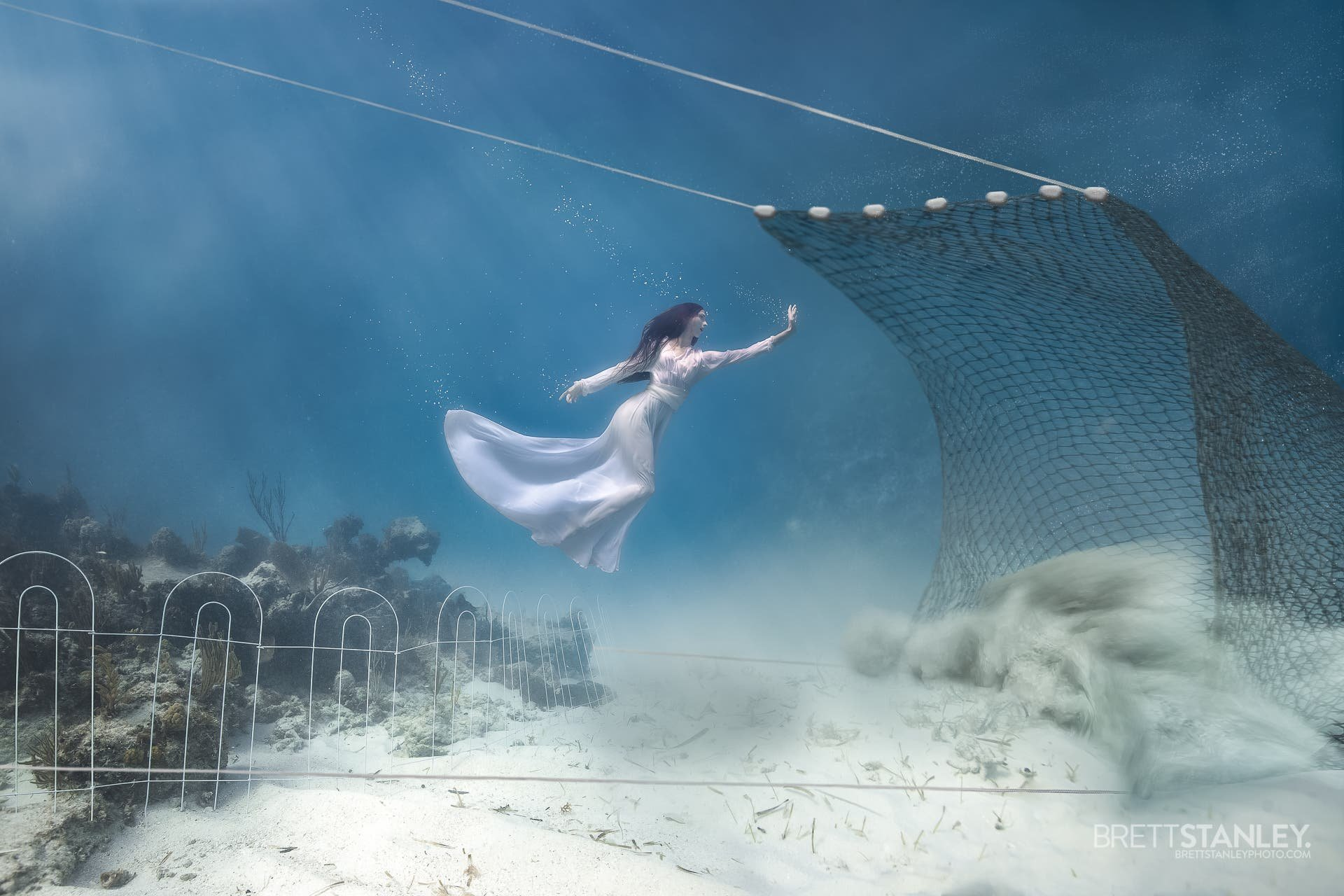 Ocean Guardians Tackles the Issue of Trawling in a Creative Way