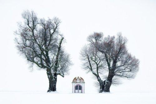 Kilian Schönberger's Brothers Grimm Portrays Enchanting Landscapes