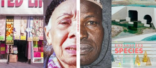 Endangered Species: Documenting Cultural Disappearances in America