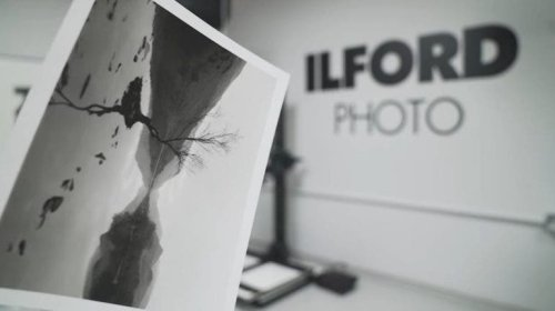 Are NFTs Another Nail in the Coffin for Print Photography?