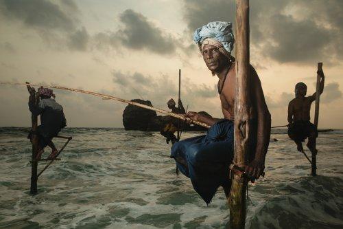 Giacomo Bruno Captures Sri Lanka's Fascinating Stilt Fishing Tradition