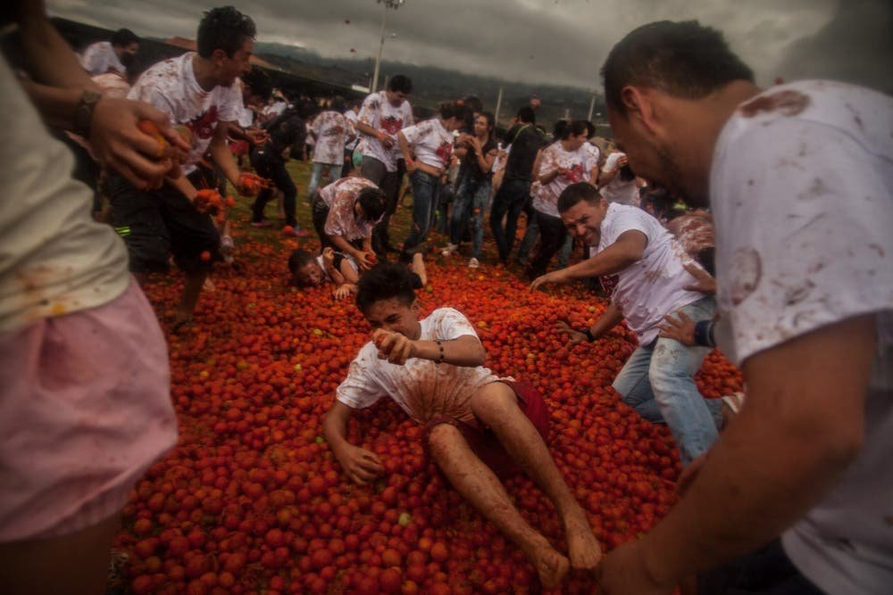 Juan Torres's Photos From La Tomatina Festival in Columbia