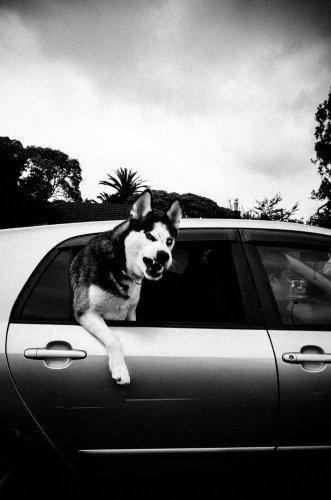 Chris Leskovsek: The Social Experiences of Street Photography