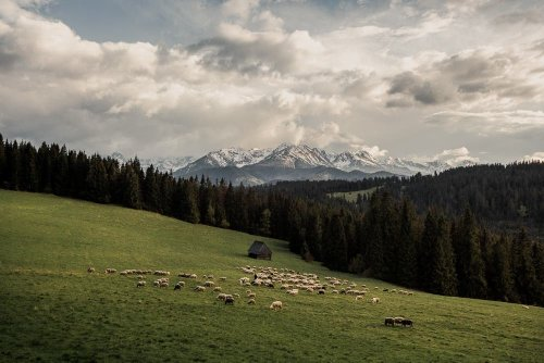 Justyna Zduńczyk Reveals the Idylls of the Polish Highlands