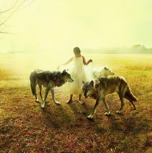 Animal Visions: Tom Chambers' Portraits of Animals and Children