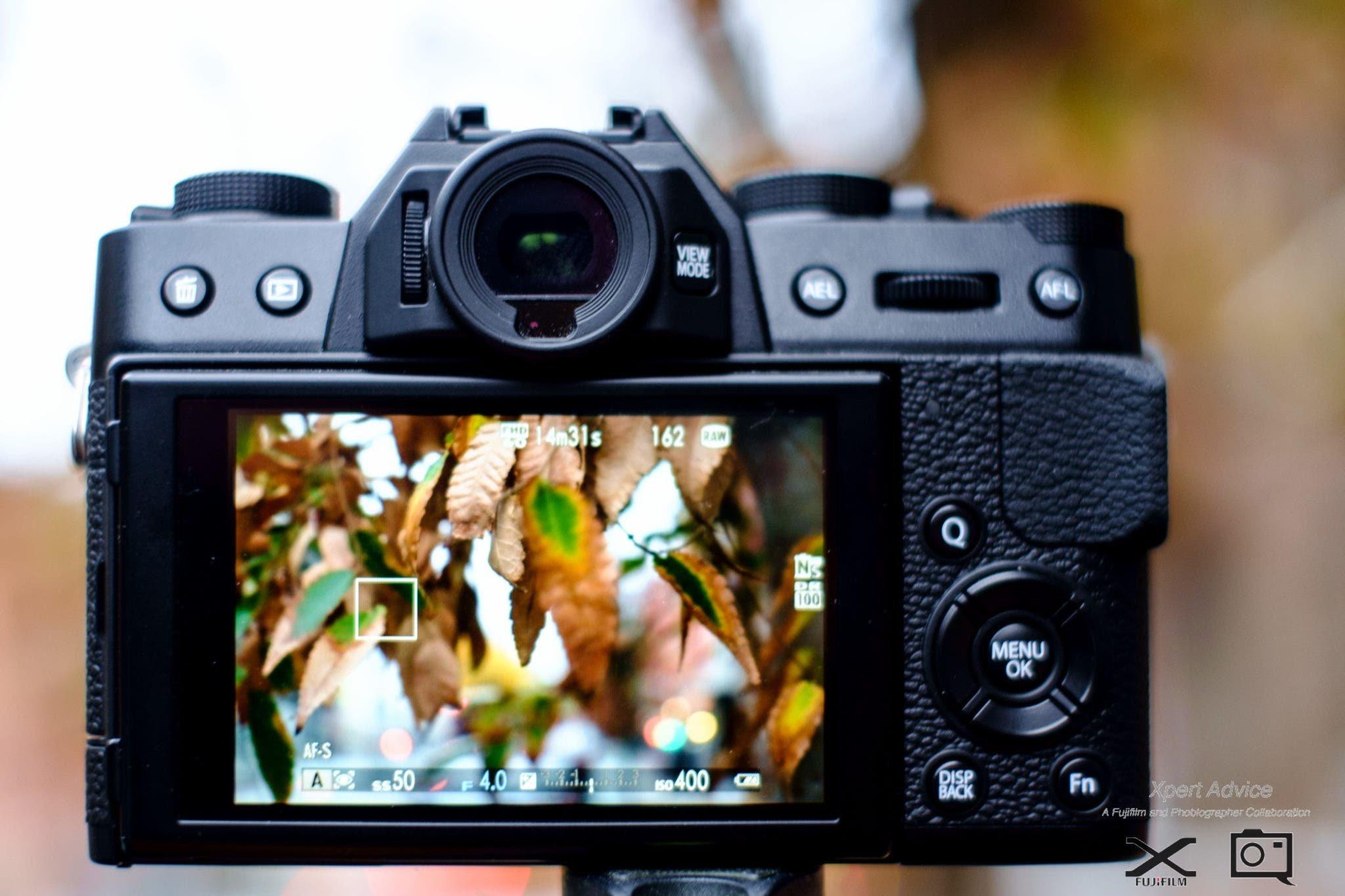 Capturing the Spirit of Fall Through Creative Photography