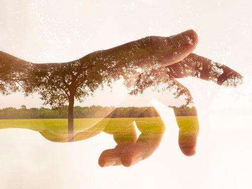 Carlos Ocando's Double Exposures are a Love Letter to the Natural World