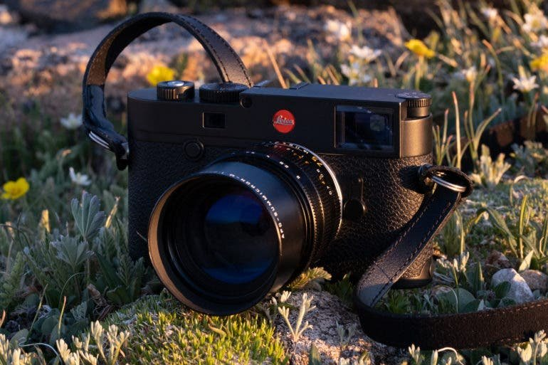Beautiful, Sharp, and Modern! Leica 75mm F2 APO ASPH Lens Review
