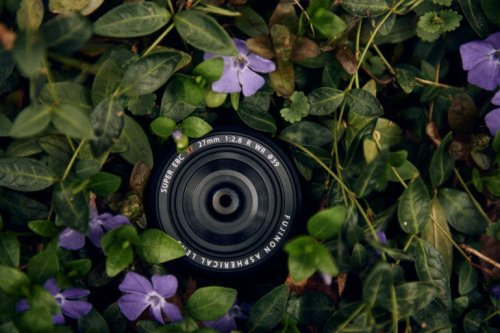 Looking for the Best Pancake Lens? We Really Liked These 3