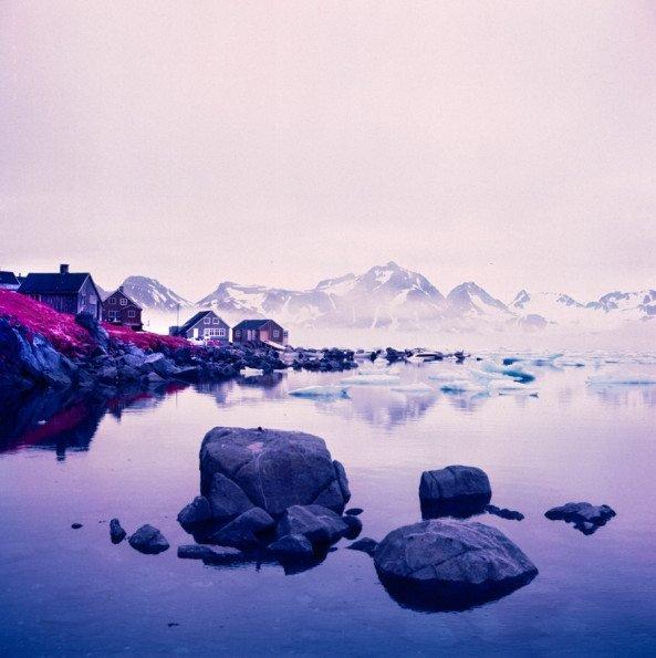 Introspective: A Photo Project Shot on Kodak Aerochrome About Self Discovery