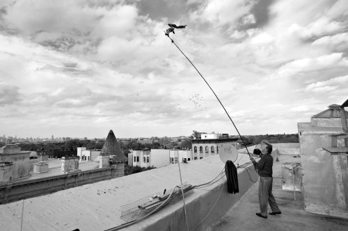 13 Exciting Stories Told from the Rooftops by Photographers
