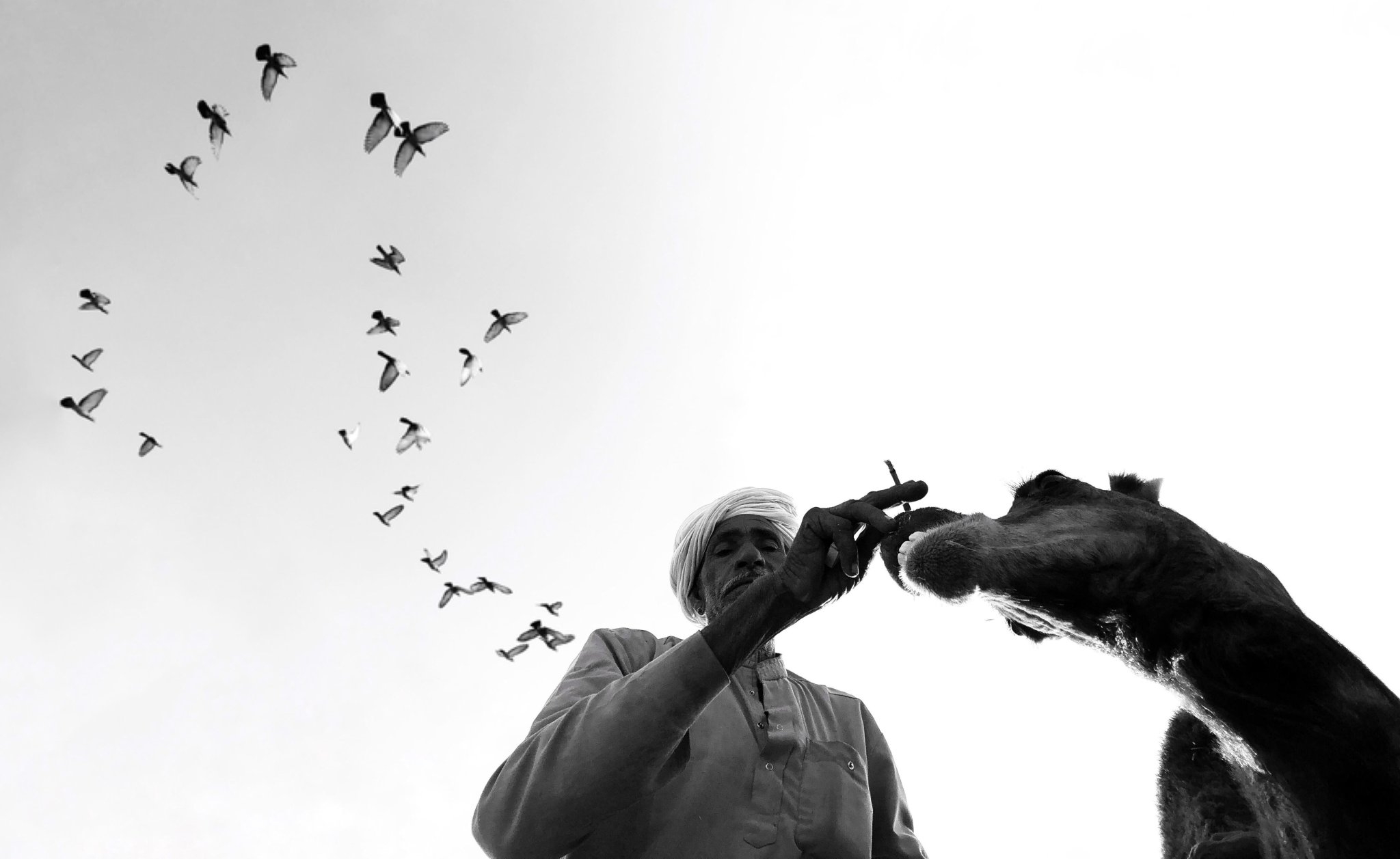 Dimpy Bhalotia: Pure Black and White Street Photography of Life's Beauty