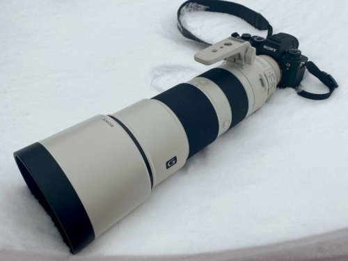 Relax! These 16 Cameras Will Work in the Snow