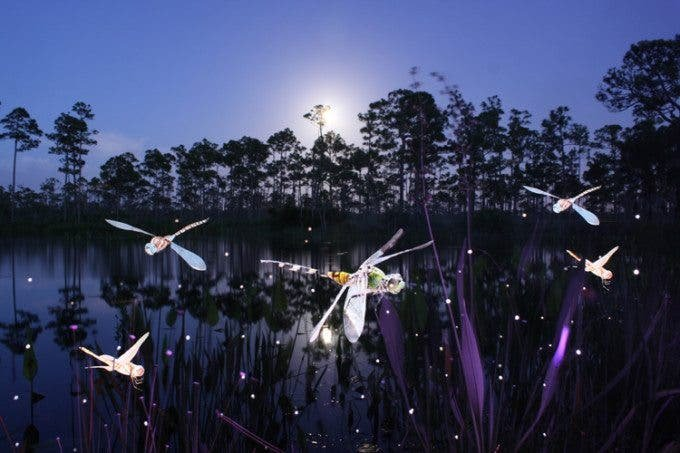The Light Paintings of Jason D Page - The Phoblographer
