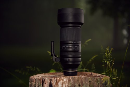 Remarkable Zoom, Handheld: Tamron 150-500mm F5-6.7 Di III Review