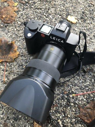 A Fantastic Portrait Lens: The Leica SL 50mm f1.4 Summilux Review