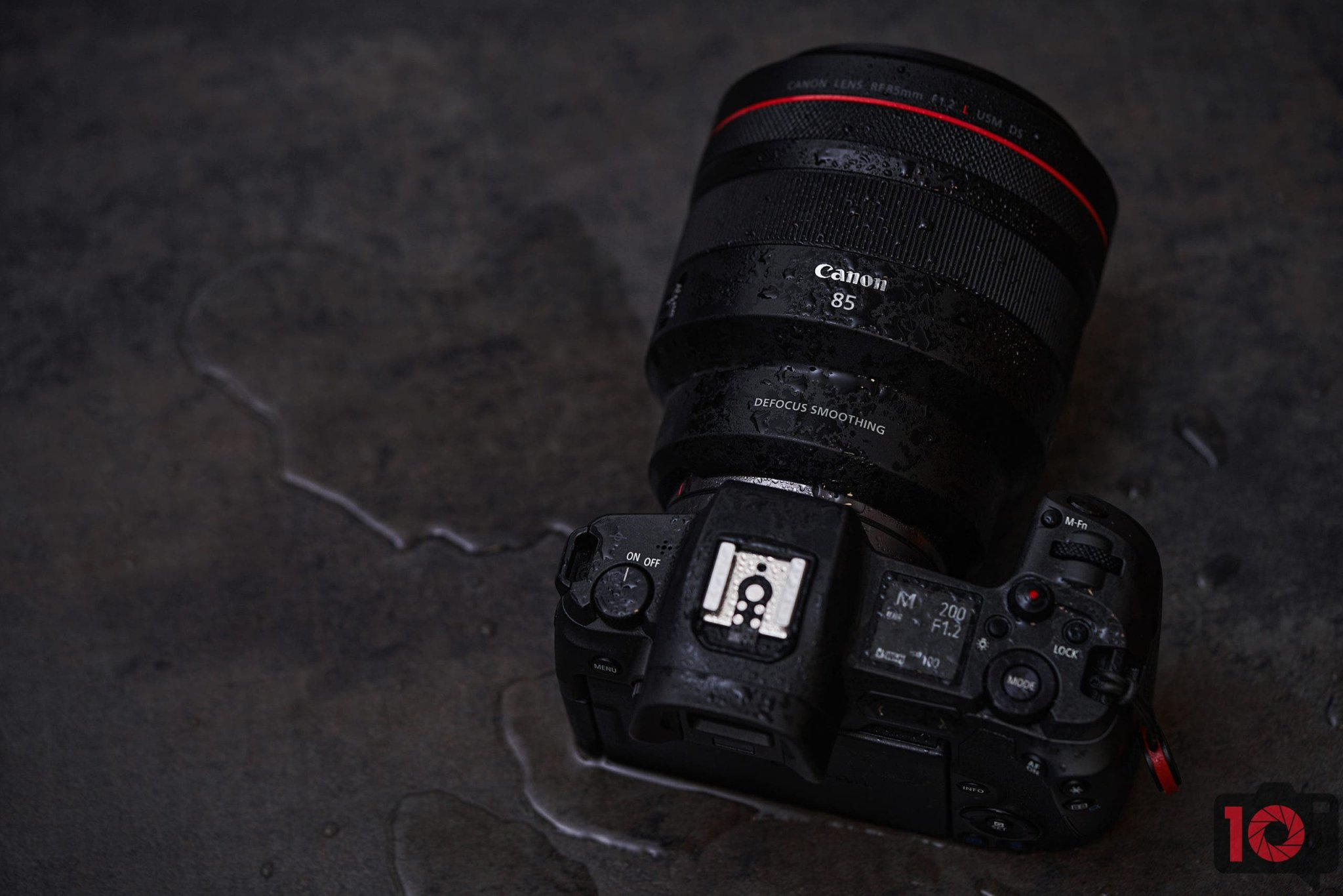 Bokeh For Days! The Canon RF 85mm f1.2 L USM DS Review