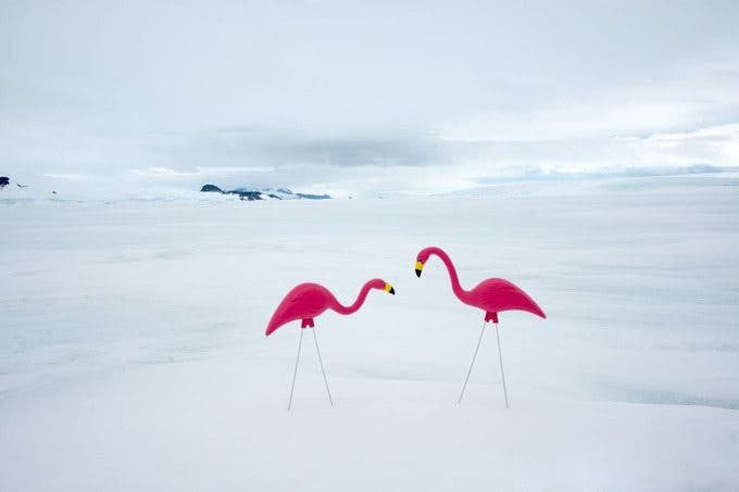 Gray Malin's Surreal Images of Summer Items in the Arctic