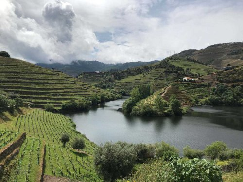 Guide to the Douro Valley from Porto - Portugal's Famous Wine Region