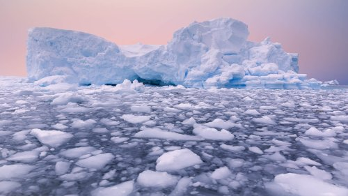 Fascinating Facts About Antarctica That Will Surprise You