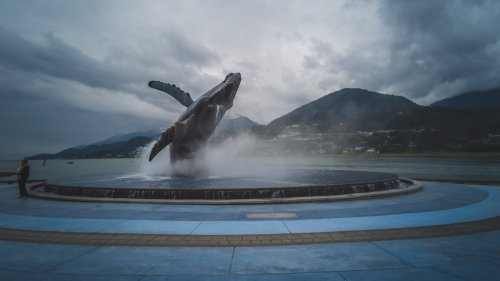 Amazing Things to do in Juneau Alaska | The Planet D
