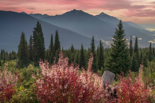 Best Things to do in Revelstoke, BC - Besides Skiing