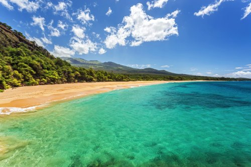 Cleared for Takeoff: A family adventure in Oahu and Maui
