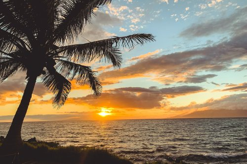 I love Hawaii, but I'm not going back anytime soon — here's why - The Points Guy