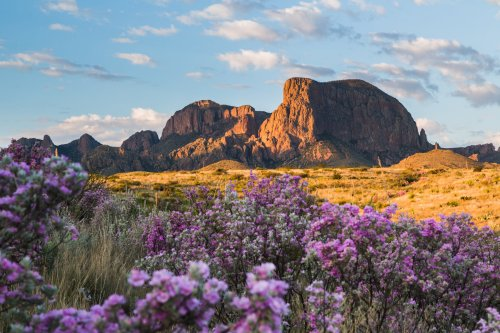 A beginner's guide to visiting Big Bend National Park: Everything you need to know, see and do - The Points Guy